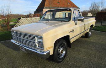 Chevrolet p/u 1984 Custom de Luxe — SOLD